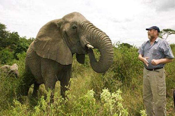 elephant-whisperer