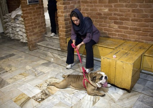 """Churchill, a bulldog, seen with his owner at Tehran Pet Hospital, the first private hospital for pets in Iran, on June 23, 2011. For decades, keeping dogs as pets was a rarity and thus tolerated in Iran, where the Islamic beliefs cherished by the vast majority of traditional Iranians consider dogs as """"najis"""", or unclean."""