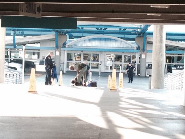 Picture of man being arrested at Jacksonville International Airport