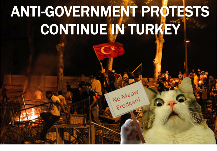 Current-Event-Cats-Protests-in-Turkey-e13811927271051