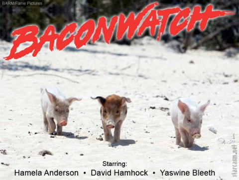 BaconWatch-480x361