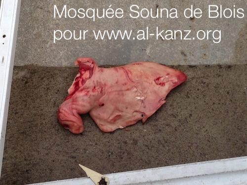 mosquée-blois-profanation-2.png