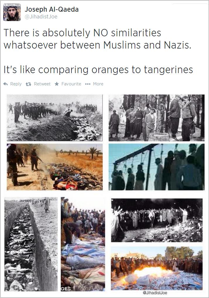 JihadistJoe-on-Muslims-and-Nazis
