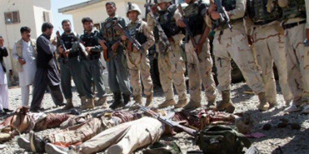 Afghanistan_Verm1