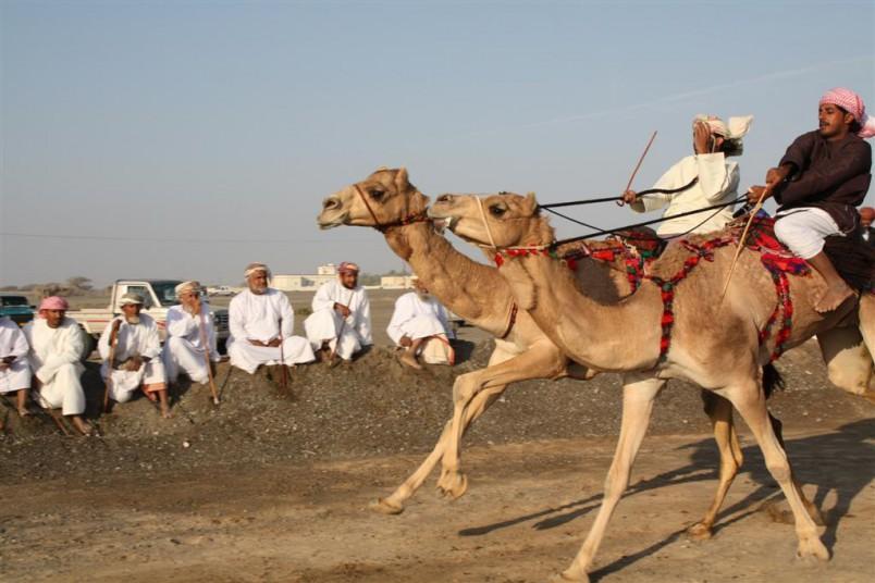 Oman-3421-Large