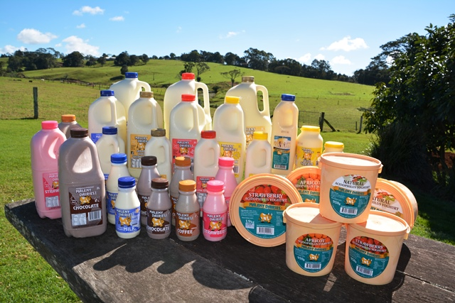 products-Maleny-dairies