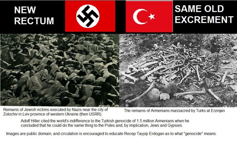 nazis_turks