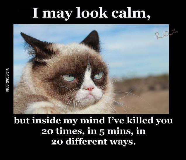 grumpy-cat-i-may-look-calm-lol-but-ive-already-killed-you-20-lmao