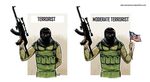 terroristandmoderateterrorists-vi