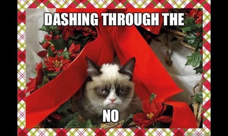 50133-grumpy-cat-christmas-meme-wallpaper-800x480