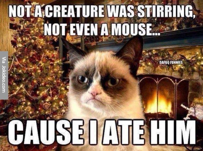 Funny-christmas-grumpy-cat-meme