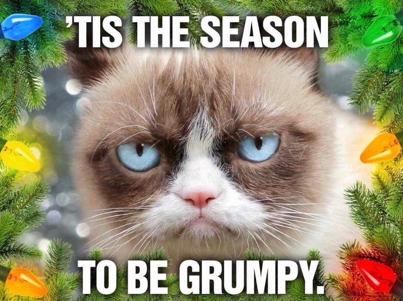 funny-grumpy-cat-season-christmas