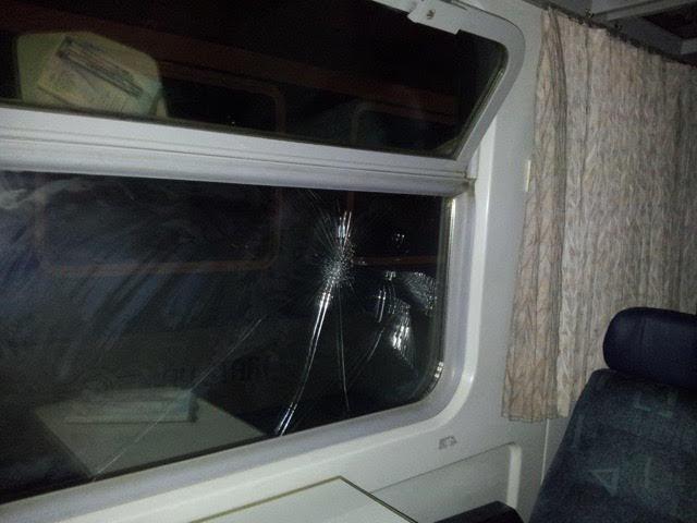 migrants-in-sweden-by-train9