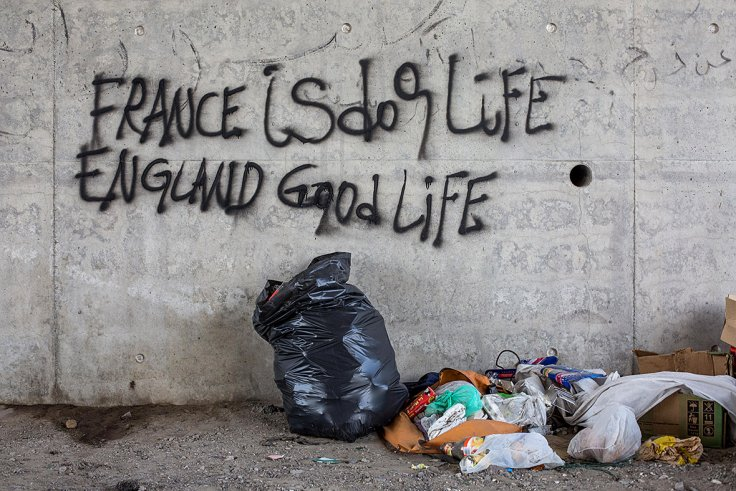 """""""France is dog life. England is good life (Yes, the government will support you for the rest of your life and the litter you will eventually breed )"""