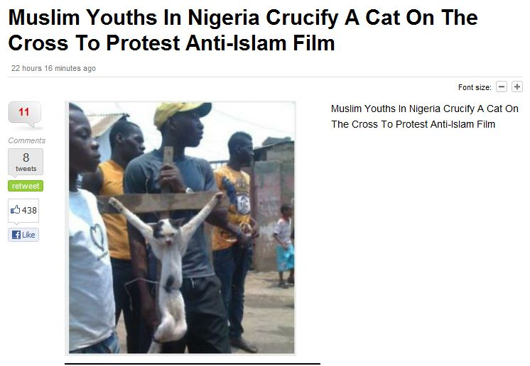 muslims-crucify-cat-to-protest-anti-islam-film-17.9.2012
