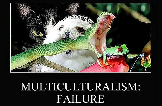Multiculturalismfailure-vi