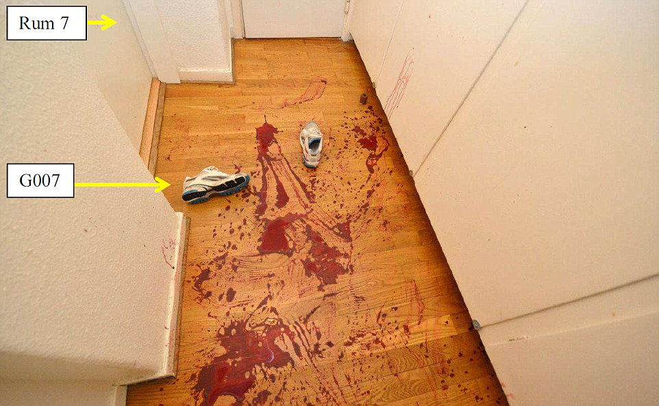 Miss Mehzer then tried to crawl away from her attacker, making her way along the corridor, leaving a trail of blood