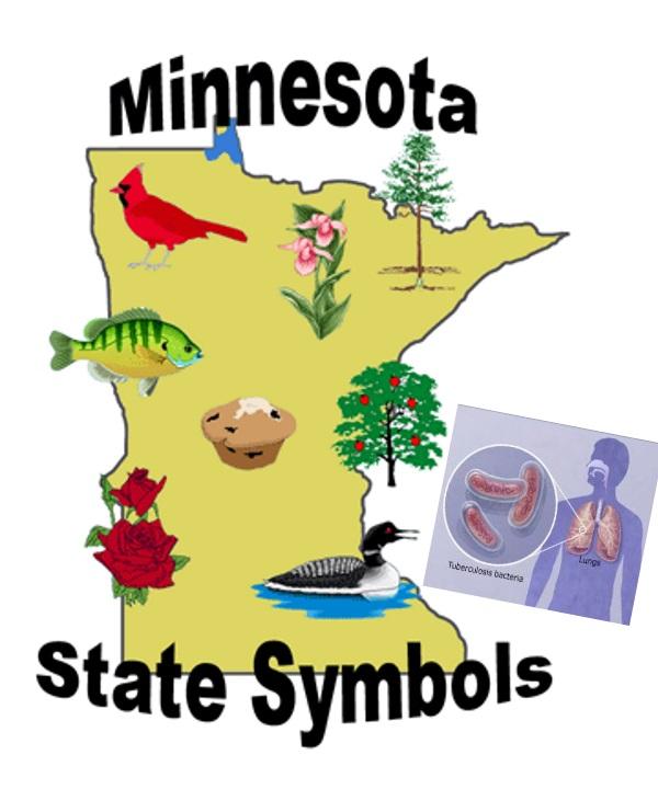 Minnesotasymbols