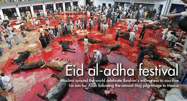 eid-al-adha-slaughter-capture