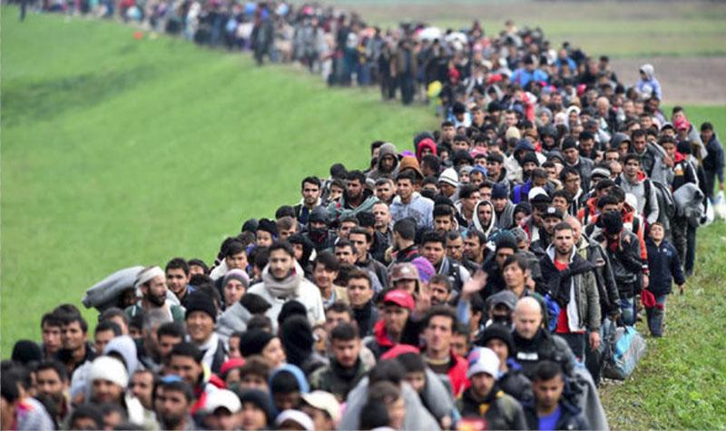 refugeesinvaders