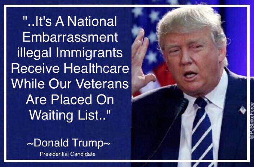 donald trump veterans affairs leader