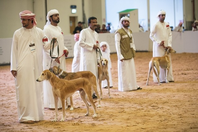 This photo is from the UAE where dogs apparently are not banned