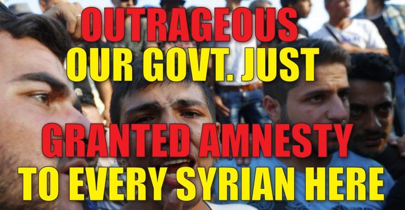 xSyrian-Amnesty-01-800x416.jpg.pagespeed.ic.Xr5QpuzMg5