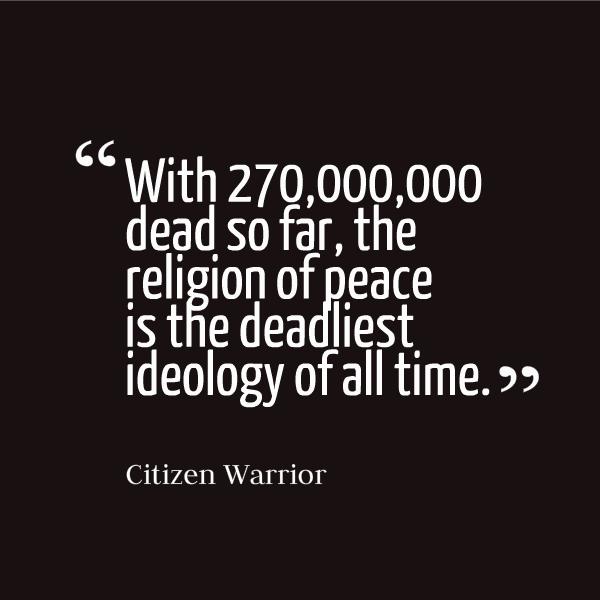 citizenwarrior-vi