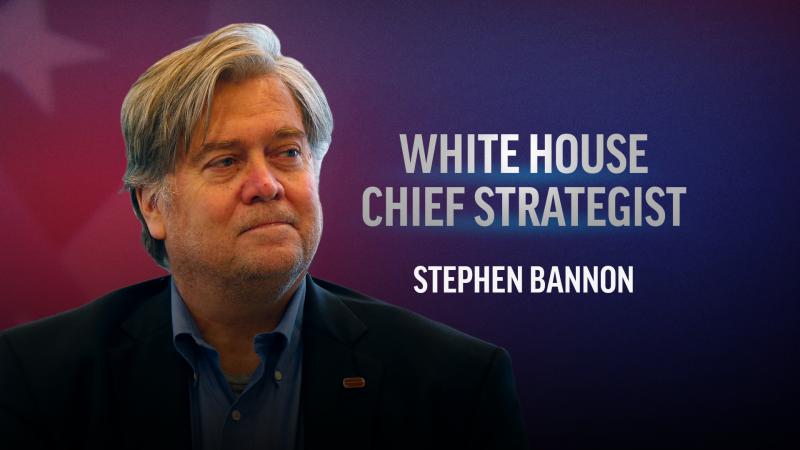steve-bannon-chief-strategist